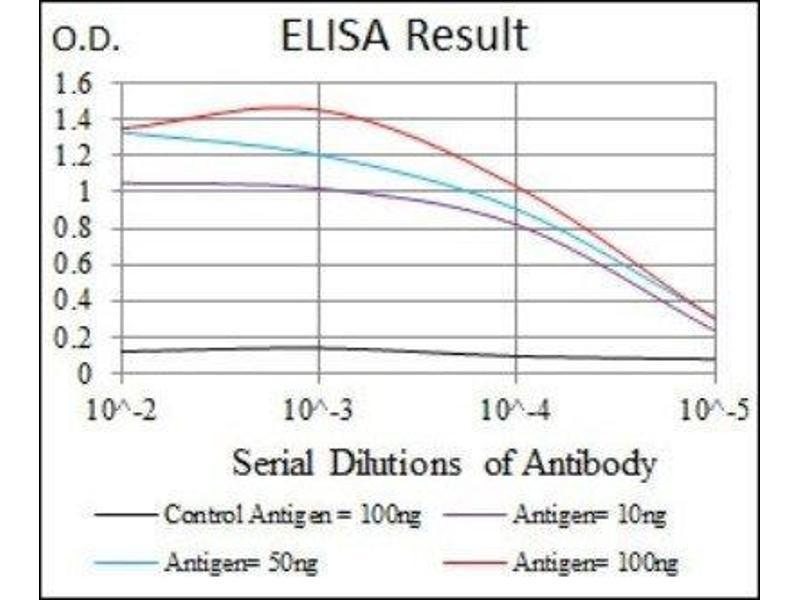 ELISA image for anti-Fas Ligand (TNF Superfamily, Member 6) (FASL) antibody (ABIN4310550)