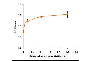 Image no. 1 for Chemokine (C-C Motif) Ligand 22 (CCL22) (Active) protein (ABIN5509429)