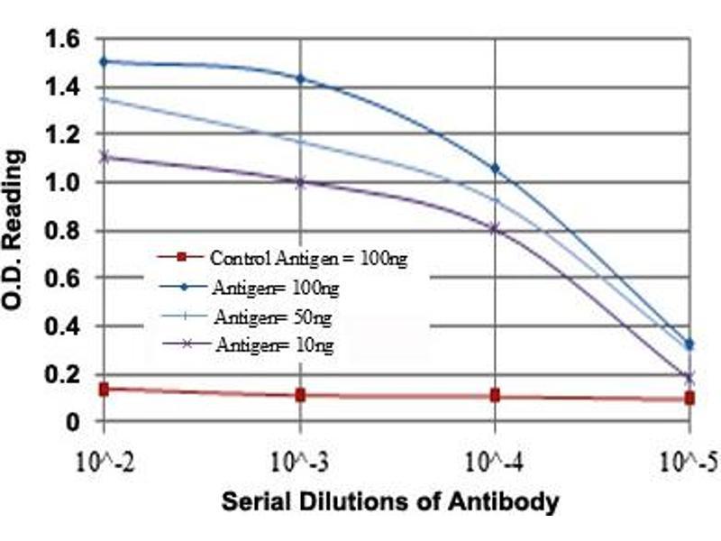 ELISA image for anti-Cas-Br-M (Murine) Ecotropic Retroviral Transforming Sequence (CBL) antibody (ABIN5573840)