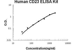 Image no. 1 for Fc Fragment of IgE, Low Affinity II, Receptor For (CD23) (FCER2) ELISA Kit (ABIN6720323)