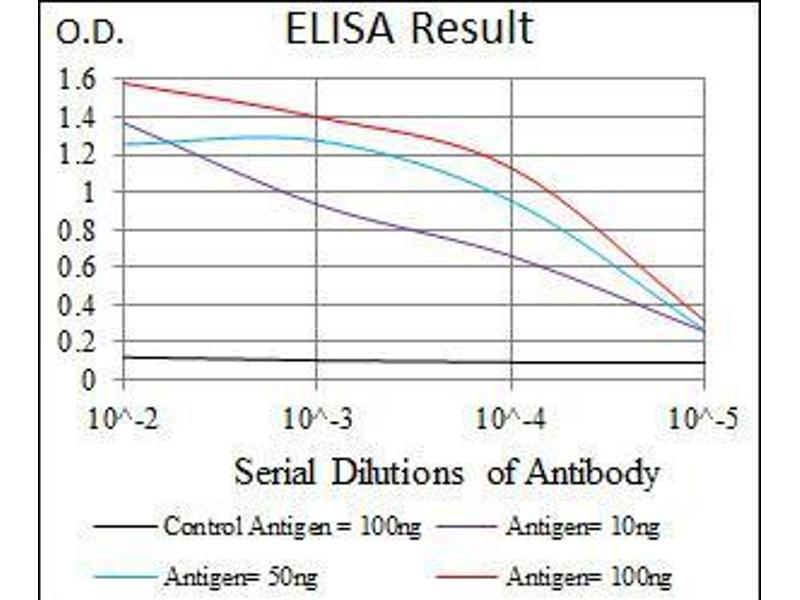 ELISA image for anti-RAF1 antibody (V-Raf-1 Murine Leukemia Viral Oncogene Homolog 1) (ABIN969560)