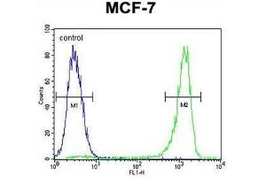 Flow Cytometry (FACS) image for anti-VEGFC antibody (Vascular Endothelial Growth Factor C) (AA 27-57) (ABIN955510)