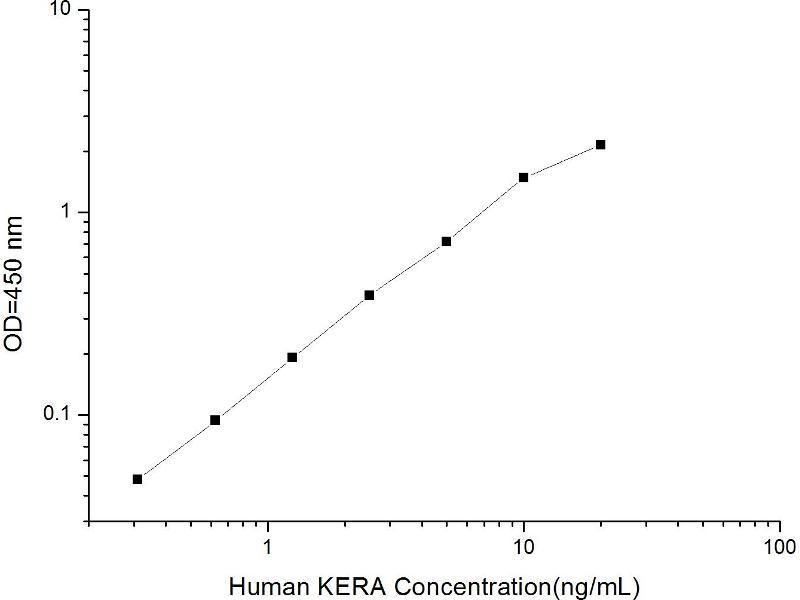 Keratocan (KERA) ELISA Kit (2)