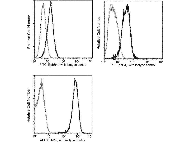Flow Cytometry (FACS) image for anti-EPH Receptor B4 (EPHB4) (AA 1-539) antibody (FITC) (ABIN1996162)