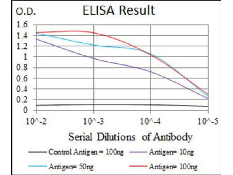 ELISA image for anti-CCAAT/enhancer Binding Protein (C/EBP), alpha (CEBPA) antibody (ABIN1845802)