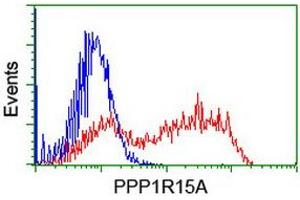 Image no. 5 for anti-Protein Phosphatase 1, Regulatory (Inhibitor) Subunit 15A (PPP1R15A) antibody (ABIN1498364)