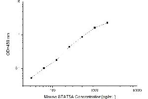 Image no. 1 for Signal Transducer and Activator of Transcription 5A (STAT5A) ELISA Kit (ABIN1117114)