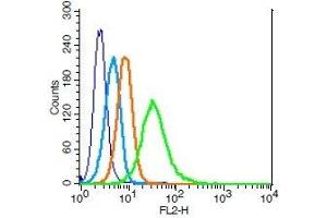 Flow Cytometry (FACS) image for anti-Interleukin 2 Receptor, gamma (IL2RG) (AA 135-185) antibody (ABIN2176981)