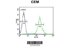 Image no. 2 for anti-Chromosome 6 Open Reading Frame 108 (C6orf108) (AA 20-48), (N-Term) antibody (ABIN652111)
