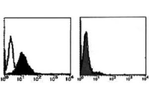 Flow Cytometry (FACS) image for anti-FAS antibody (Fas (TNF Receptor Superfamily, Member 6)) (ABIN1106612)