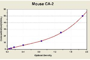 Image no. 1 for Carbonic Anhydrase II (CA2) ELISA Kit (ABIN1113936)