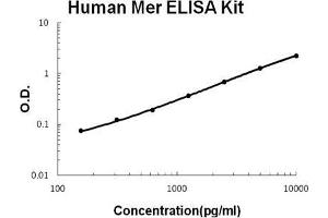ELISA image for MERTK ELISA Kit (C-Mer Proto-Oncogene Tyrosine Kinase) (ABIN921101)