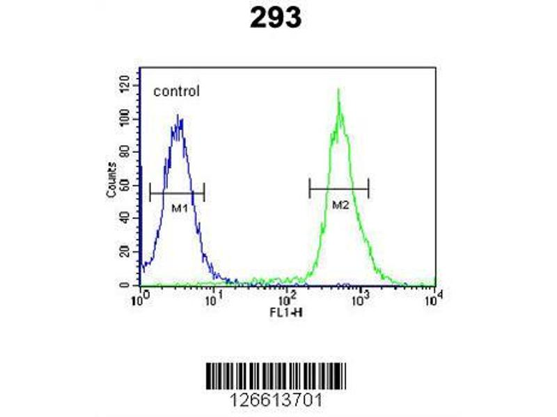 Flow Cytometry (FACS) image for anti-TAM41, Mitochondrial Translocator Assembly and Maintenance Protein, Homolog (S. Cerevisiae) (TAMM41) (AA 180-208), (Center) antibody (ABIN651587)