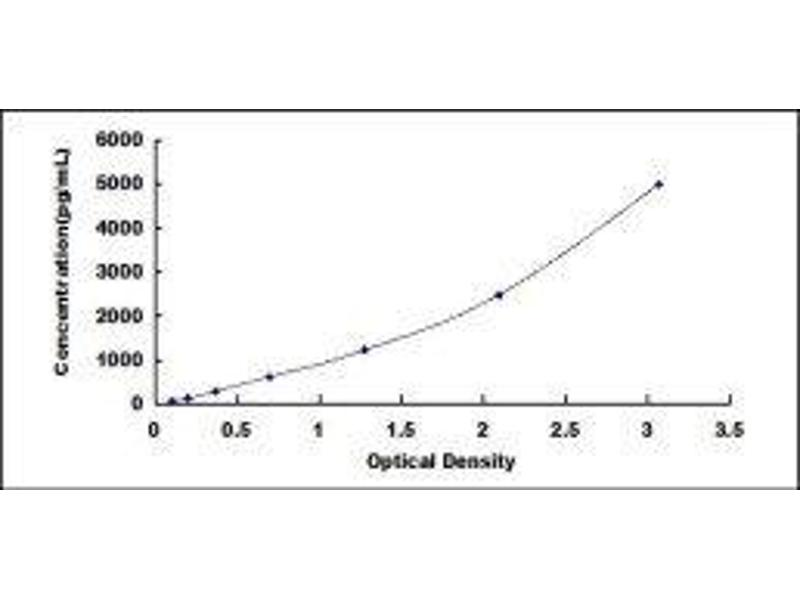 Acid Phosphatase 5, Tartrate Resistant (ACP5) ELISA Kit