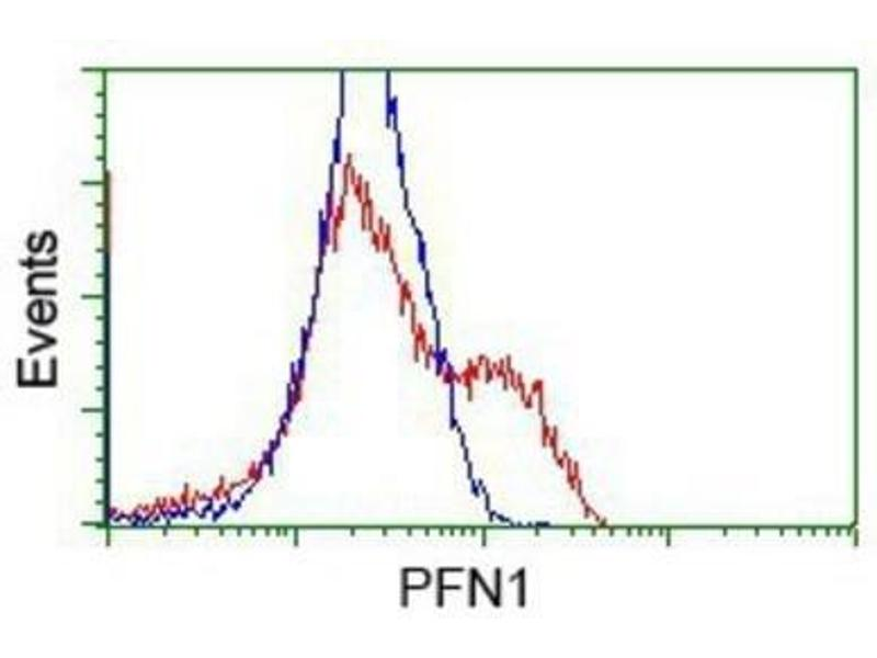 Flow Cytometry (FACS) image for anti-Profilin 1 (PFN1) antibody (ABIN4347407)