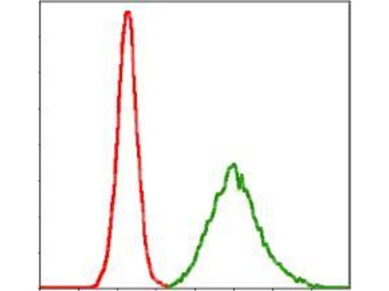 Flow Cytometry (FACS) image for anti-Potassium Voltage-Gated Channel, KQT-Like Subfamily, Member 1 (KCNQ1) antibody (ABIN969227)