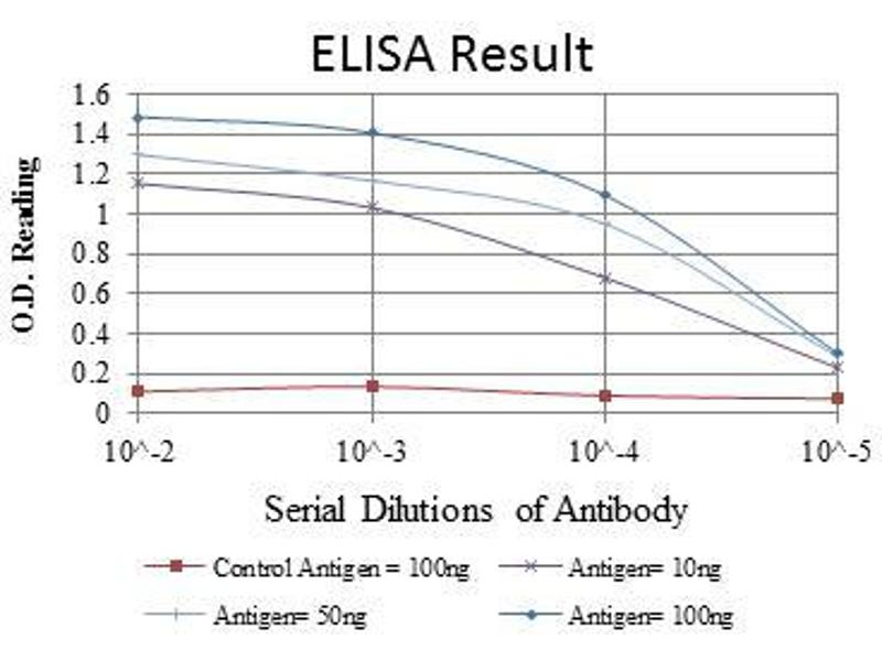 ELISA image for anti-FYN antibody (FYN Oncogene Related To SRC, FGR, YES) (ABIN969159)