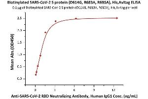 Image no. 1 for SARS-CoV-2 Spike (D614G), (Super Stable Trimer) protein (His tag,AVI tag,Biotin) (ABIN6953300)